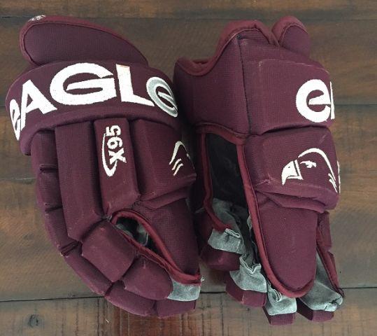 Eagle X95 1