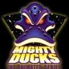 duckshawkey's Photo